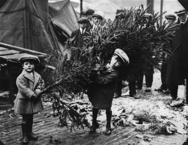 1920: Two little boys dragging home their Christmas tree after choosing it at Londons Covent Garden Market