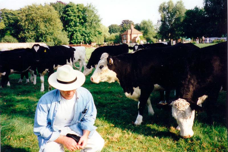 ZZ-&-Cows-1