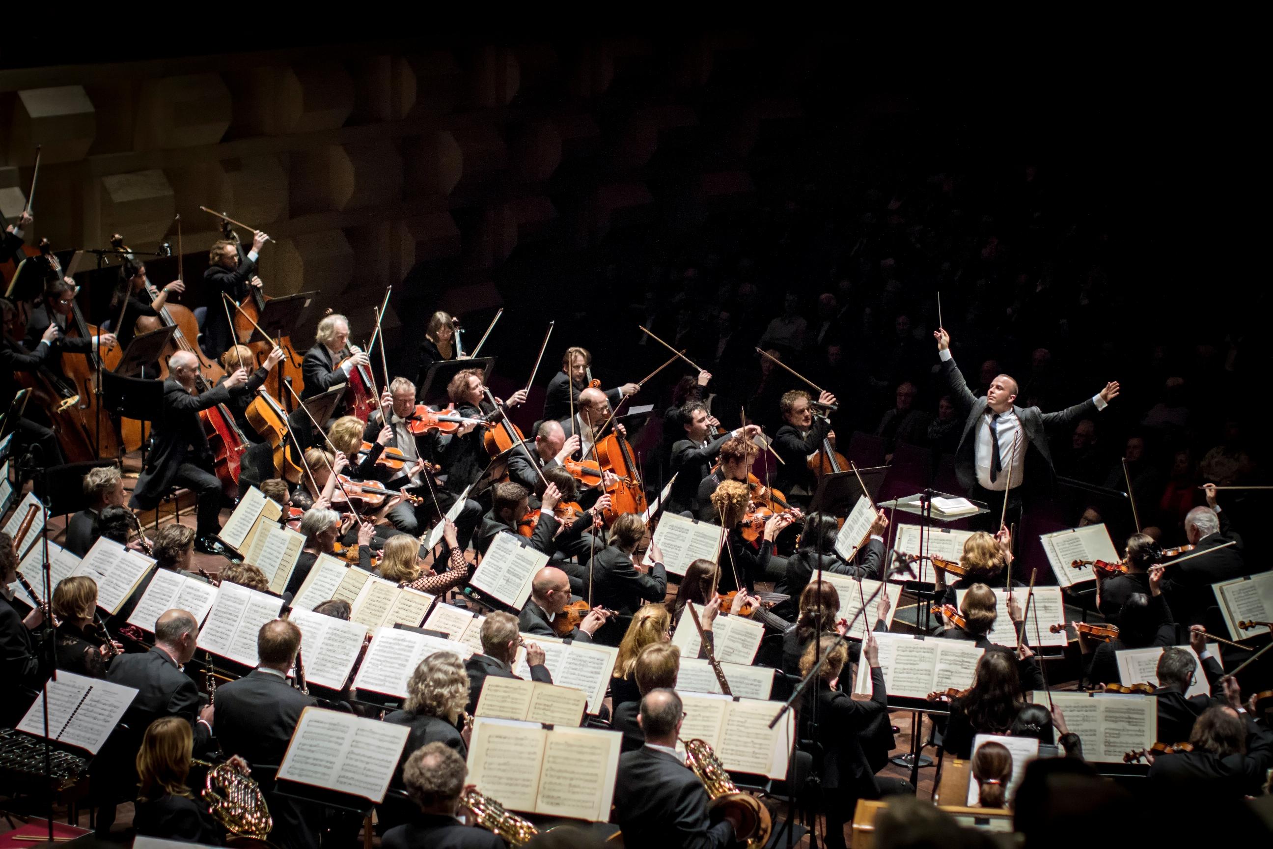 Rotterdam_Philharmonic,_jan_2012_-_2_(c)_Hans_van_der_Woerd