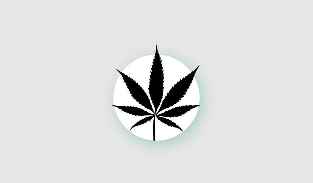 Сколько марихуаны можно хранить марихуана на фейсбуке