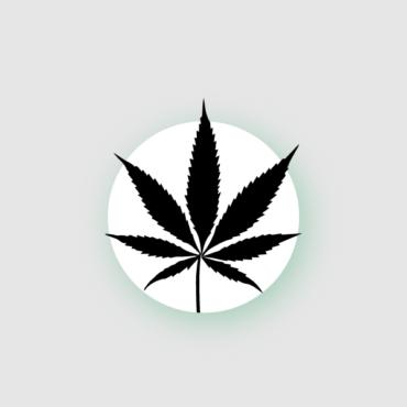 Опасно ли хранить в UK марихуану? Что будет, если вас с ней поймают?