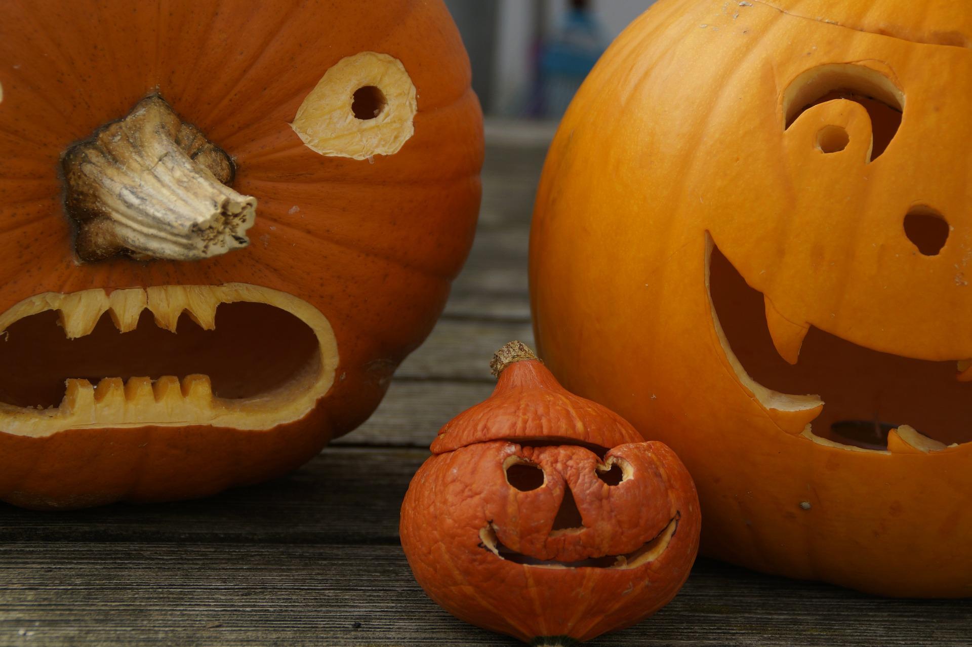 Как не испортить соседским детям Хэллоуин