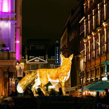 Фестиваль света Lumiere London: как Лондон превращается в сказочный лес (фото)
