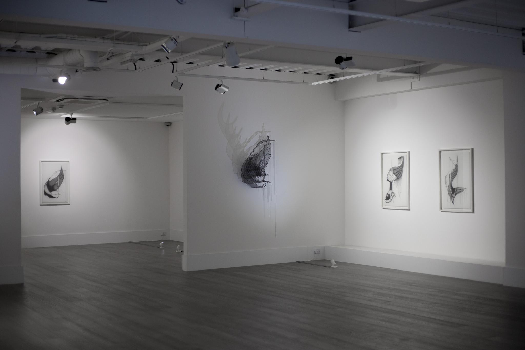 Как открыть галерею в Лондоне, Sophia Contemporary Gallery, London