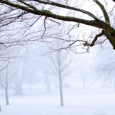 Десять самых красивых описаний снега и зимы в английской литературе