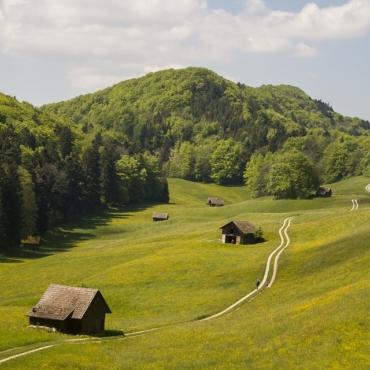 Швейцарское территориальное устройство как страшный сон иммигранта