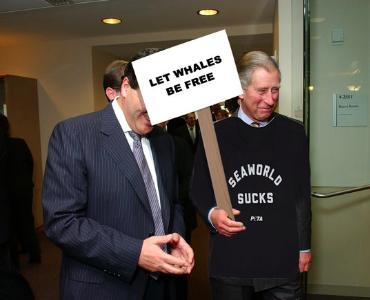 Чарльз, принц китов. Самые смешные мемы о том, как Дональд Трамп перепутал титул сына королевы