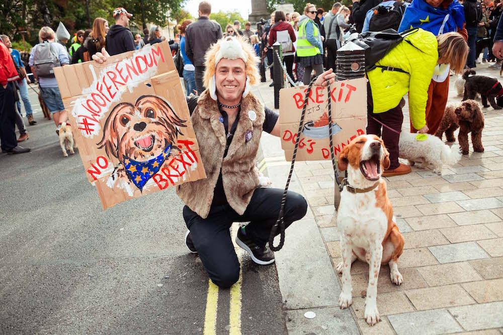 Собаки против Брекзита