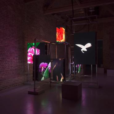 Каким будет мир через 0,04 секунды? Выставка Хито Штейерль в Serpentine Galleries
