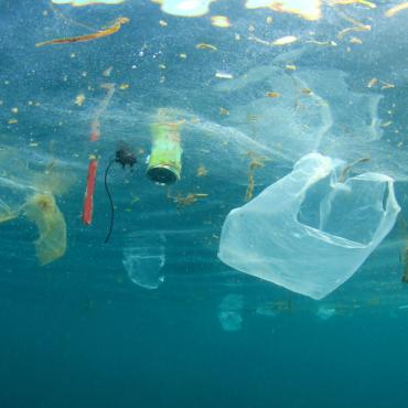 Как правильно отправлять на переработку пластик и другой мусор в Британии