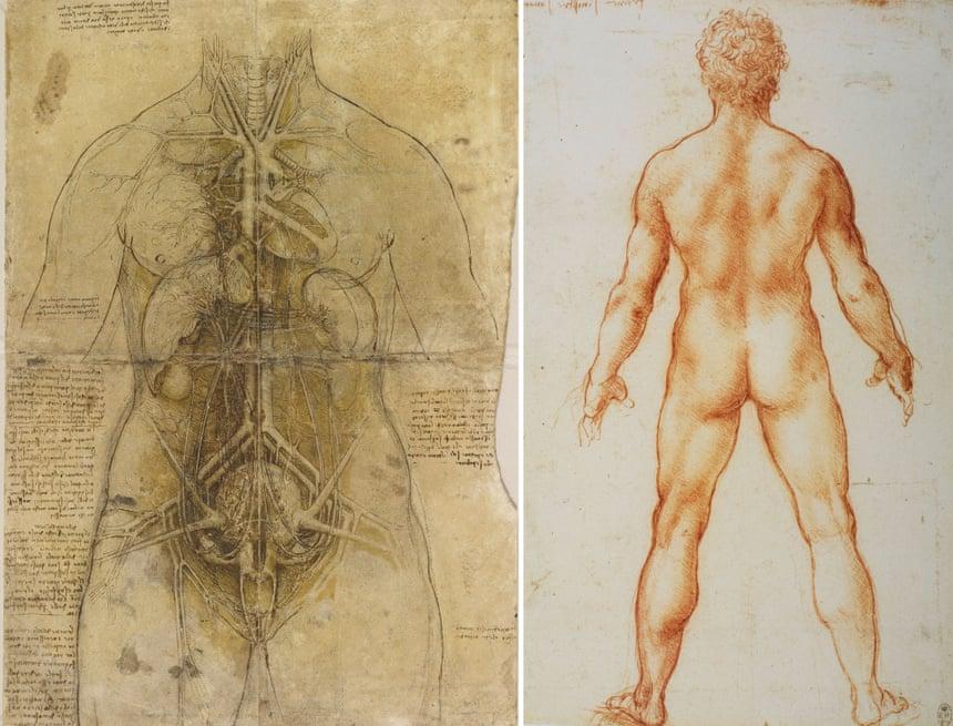 Study Of Nude Men Tote Bag For Sale By Leonardo Da Vinci