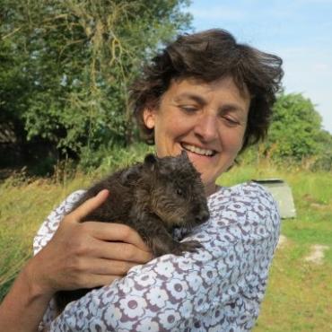 Назад к природе: почему все больше англичан отказываются стричь газоны
