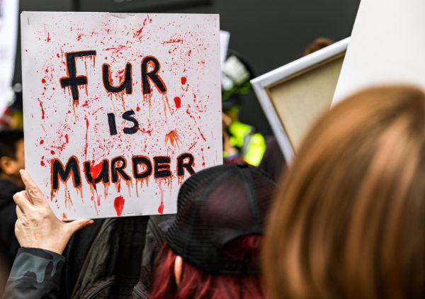Fur is murder