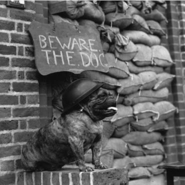 История в фотографиях: Лондон военного времени