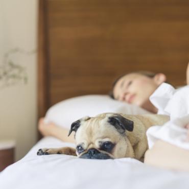 Режим сна на карантине: рекомендации доктора Грассетто из GB Thermae Hotels