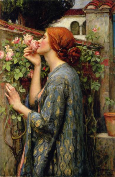 Современная английская роза