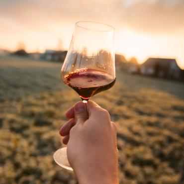 Вино для пикника: к шашлыку, суши и бутербродам