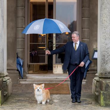 Dog-friendly: роскошные отели в Англии, где можно отдохнуть с домашними питомцами