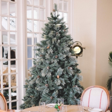 Ярмарки, садовые центры и доставка: где купить новогоднюю ёлку в Лондоне