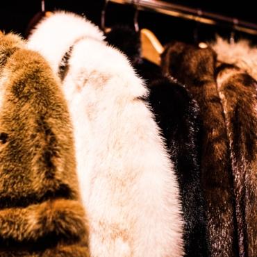 Британские власти предложили запретить продажу натурального меха