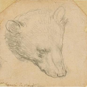 Рисунок медведя Леонардо да Винчи продан на лондонском аукционе за рекордные 8,8 миллиона фунтов