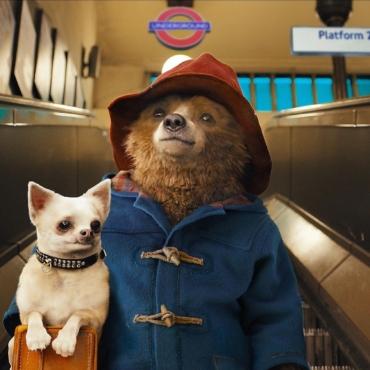 Прогулка по Лондону по следам медвежонка Паддингтона