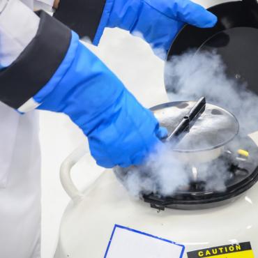 Правительство Британии разрешит увеличить срок хранения замороженных яйцеклеток и спермы с 10 до 55 лет